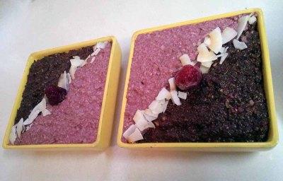 cocoa-raspberry treat2