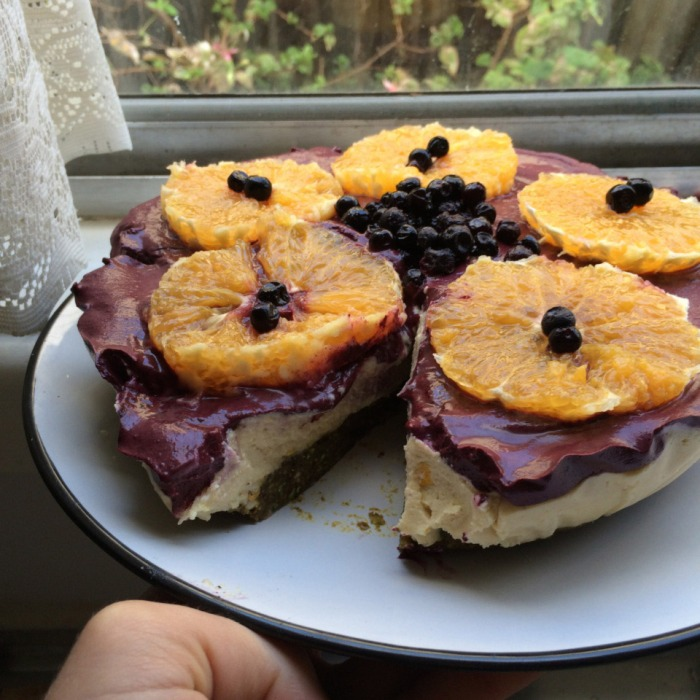 Raw Vegan Sugarfree Orange Lemon Blueberry Cheesecake